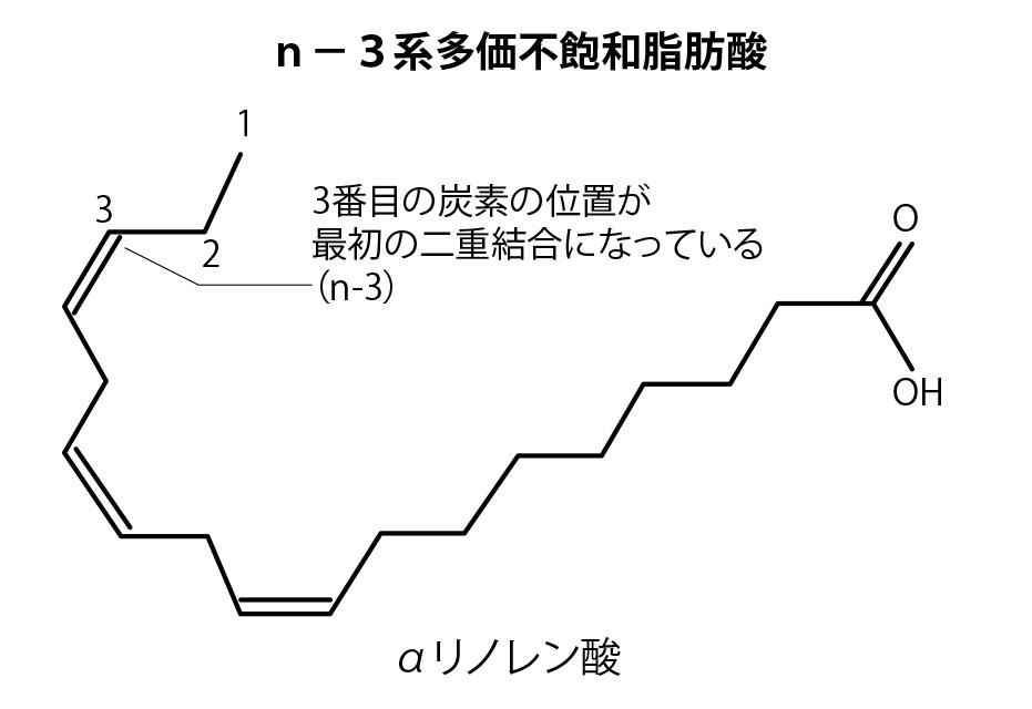 α-リノレン酸